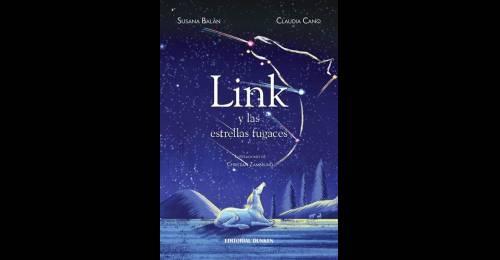 El sueño de Link en torno a las estrellas fugaces